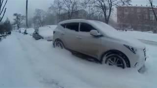 Весна, Снегопад, Гледичия и Жуки в Киеве, Первое Марта