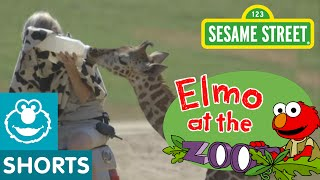 Sesame Street: Elmo Visits Baby Animals (Elmo At The Zoo #4)