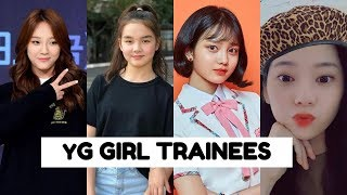 BLACKPINK's Sister Group? | YG GIRL TRAINEES (2019 UPDATE)