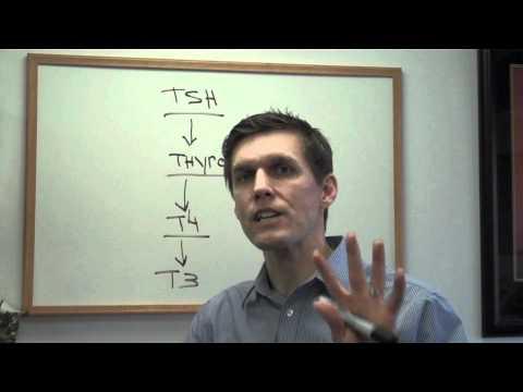 What is TSH?
