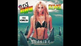 Shakira - Whenever, Wherever (Dj Cry Remix)