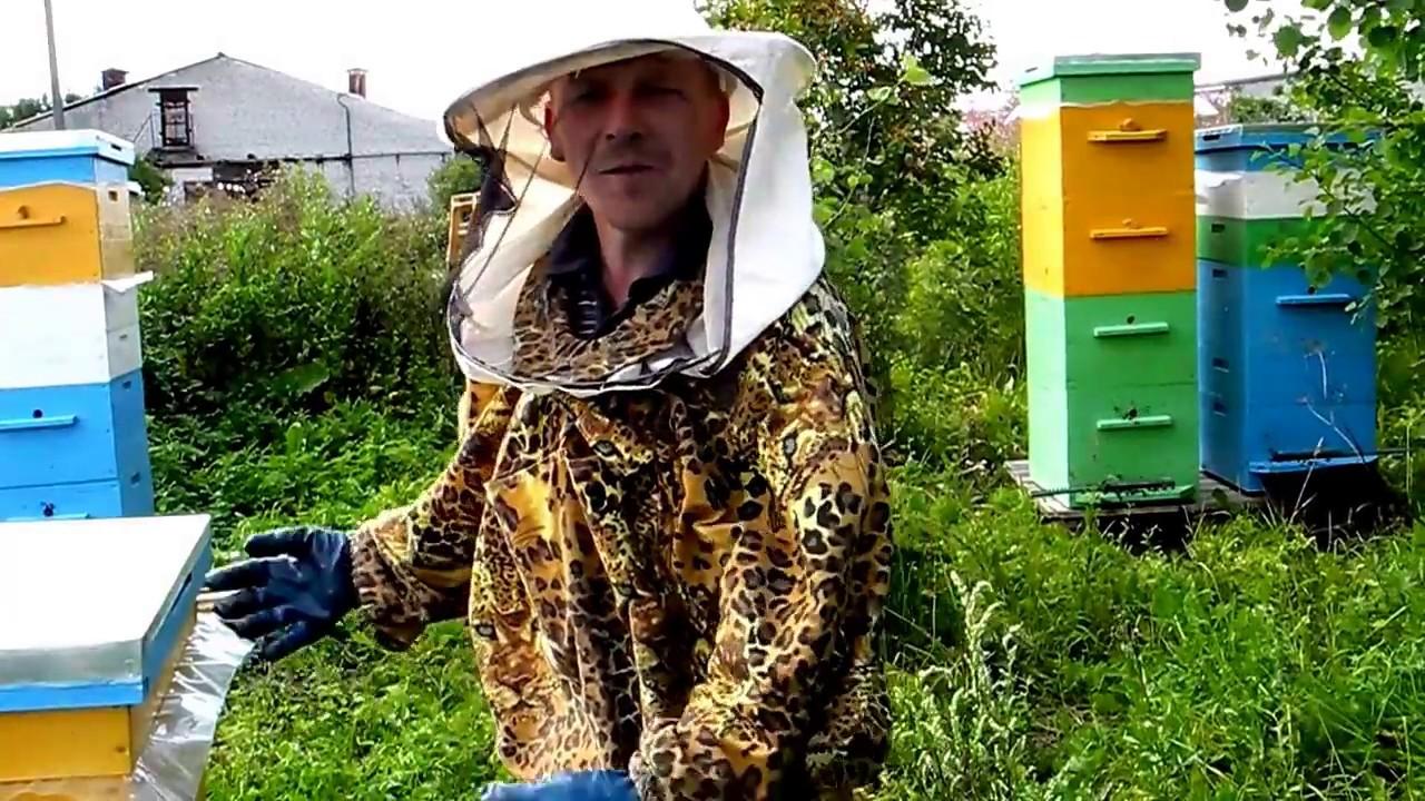 как видеофильм про пчеловодство администрацию сайта возможность