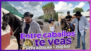 Pepe Aguilar - El Vlog 205 - Entre Caballos te Veas