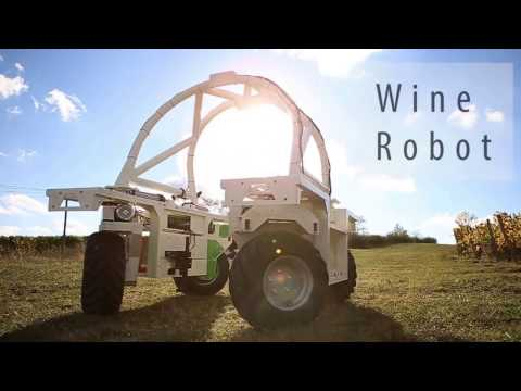 wine article Who is Ted the Vineyard Weeding Robot