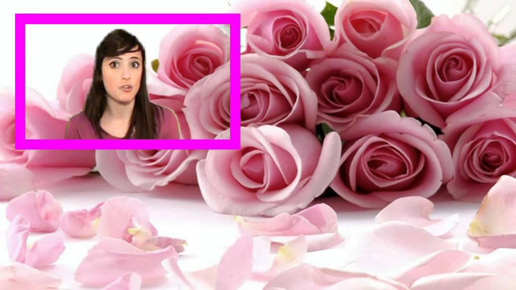El Significado De Las Rosas Rosadas Youtube
