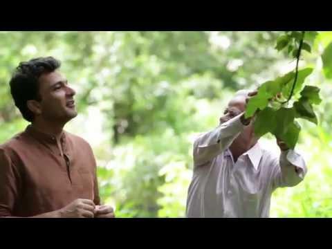 TWIST OF TASTE- Ratnagiri episode 1- FOX TRAVELLER