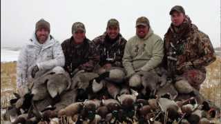 Duck Hunting Goose Hunting : Mallard Hunt & Goose Hunt in Alberta : Hired2Hunt