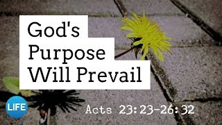 God's Purpose Will Prevail | March 3, 2019