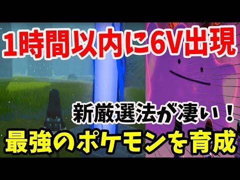 剣 盾 6v メタモン