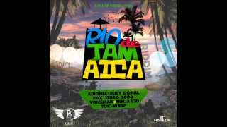 RIO DE JAMAICA RIDDIM MIXX BY DJ-M.o.M RDX, AIDONIA, BUSY SIGNAL, VOICEMAIL & NINJA KID and more