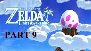 The Legend Of Zelda Link's Awakening  Walkthrought  09