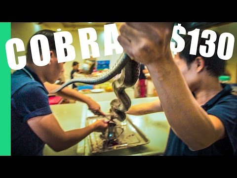 Eating a $130 Cobra in Vietnam (w/ Kyle Le)