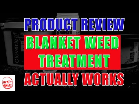Blanket Weed Treatment. It Works!!