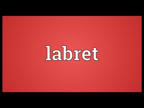 Labret Meaning