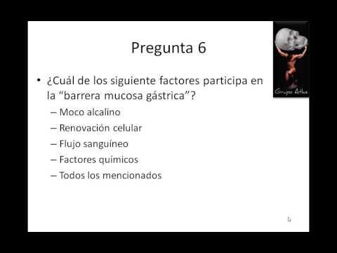 FISIOLOGIA DIGESTIVA REPASO DE PREGUNTAS   GRUPO ATLAS