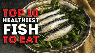 Top 10 Healthiest Fish To Eat