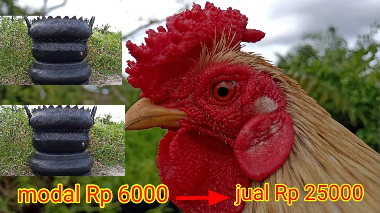 Pot bunga modal Rp 6000