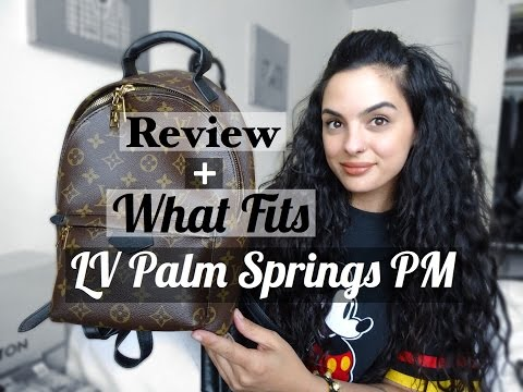 Louis Vuitton Palm Springs Backpack PM Review+What Fits | elle be |