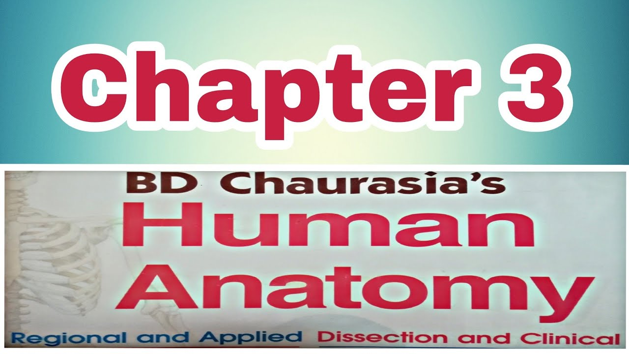 3 Chapter Human Anatomy Bd Chaurasia Video Make Drhutosh