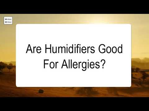 Are Humidifiers Good For Allergies