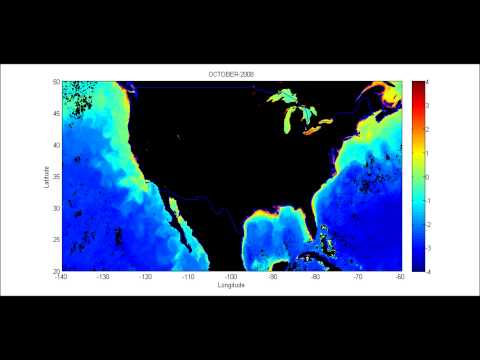USA-Concentration Of Chlorophyll-a In Sea Water, Log[mg M-3]