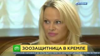 Мечта о встрече. Памела Андерсон мечтает о встрече с Путиным. Новости сегодня.