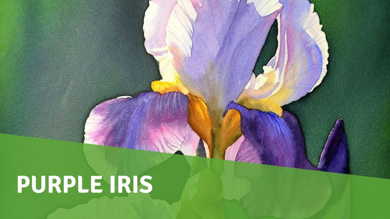 Watercolor painting demo purple iris youtube watercolor painting demo purple iris izmirmasajfo