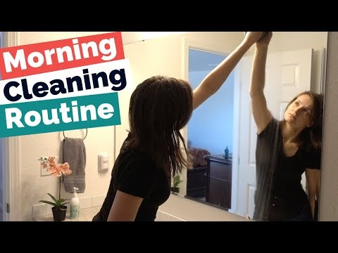 Morning Cleaning Routine / Beginner Flylady System Routine / Clean with me