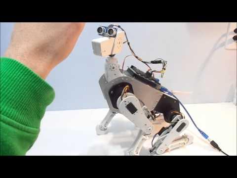 Robot Dog (aka