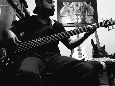 311 - Love song Bass cover