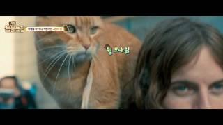 [내 어깨 위 고양이, 밥] 무비 동물농장