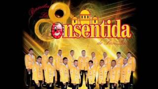 Banda la Consentida de San Luis - El suplente