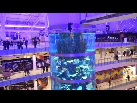 Открытие ТЦ Авиапарк - Колонна-аквариум с рыбками