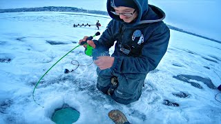 Ice Fishing A Multispecie GLORY HOLE!!! (Surprise Catch)