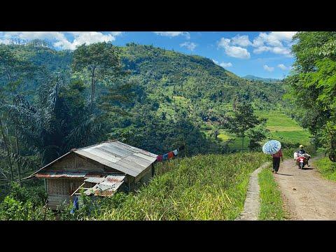 Kecapi Suling Sunda Termerdu Dengan Suasana Pedesaan Jawa Barat Dari Jalan Kampung Di Talegong Garut
