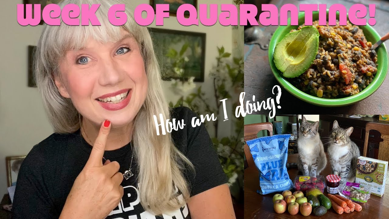 Week 6 of Quarantine! How I'm Doing with Food, Friends, Work etc