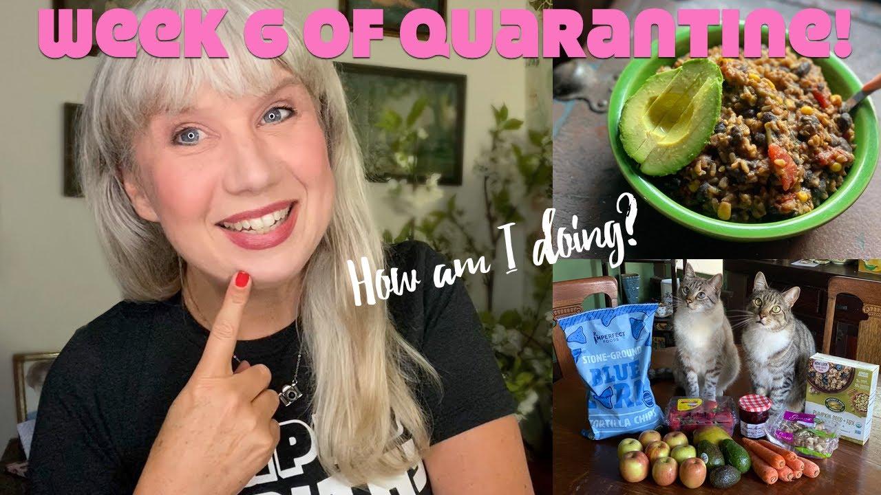 Week 6 of Quarantine! How I'm Doing with Food, Friends, Work etc