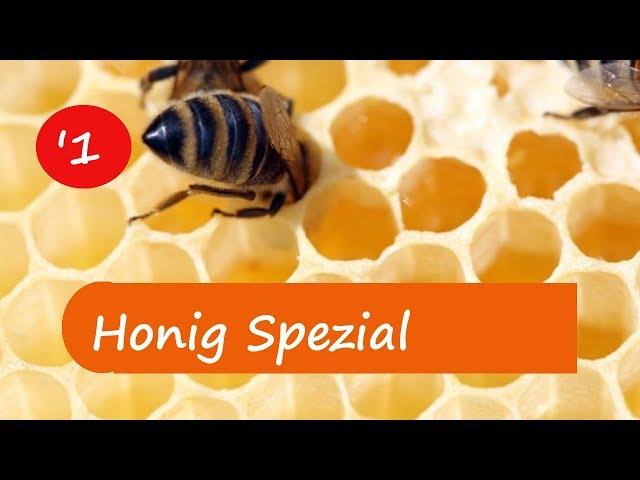 Grundwissen Honig 1-  Unterschied cremiger Honig - flüssiger Honig und mehr