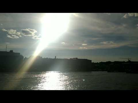 The seagull of Helsinki