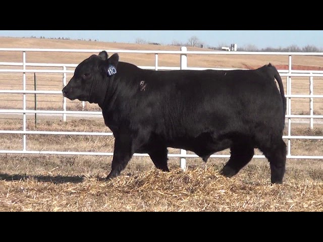 Express Ranches Lot 110