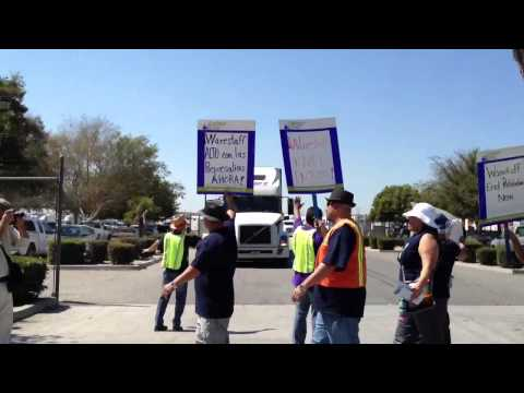 Warehouse Worker United  (WWU) Picket Line Perspective