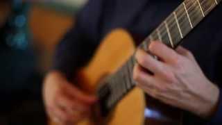 Dusan Bogdanovic - Rainforest Canticles, Cello Guitar Duet Duo Vitare