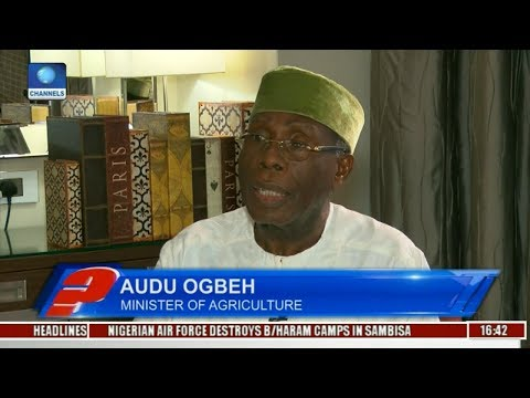 Audu Ogbeh Highlights Yam Export Alternatives Pt 2