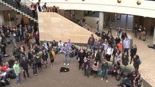 Carlson School of Management Flash Mob, Deck the Halls