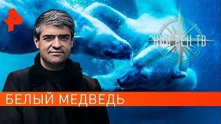 Белый медведь. НИИ РЕН ТВ (11.09.2019).