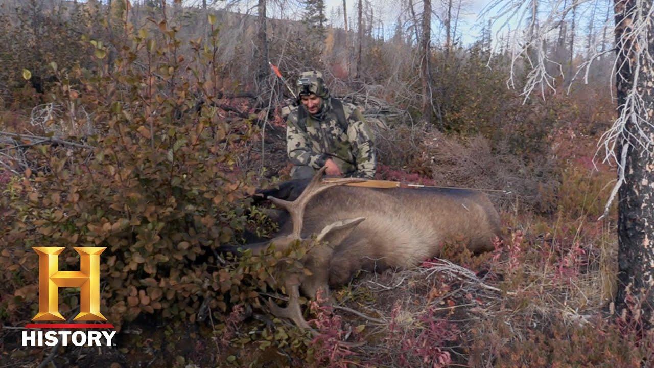 Download Alone: Breaking Down a Moose (Season 6) | Exclusive | History