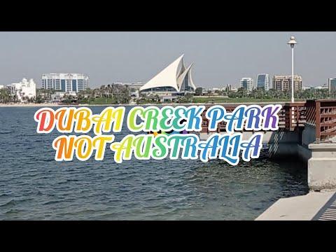 WALK AROUND BEAUTIFUL DUBAI CREEK PARK TO RELEASE STRESS AND INHALE FRESH AIR AND GET VITAMIN D