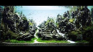 beautiful aquascape the art of the planted aquarium encrest 90sec