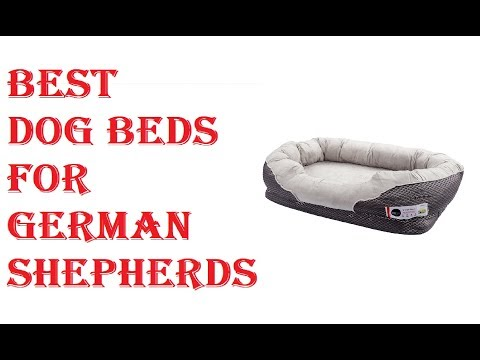 Best Dog Beds For German Shepherds 2019