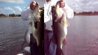 Art of Fishing Guide Service: Orlando Florida Bass fishing in Disney area